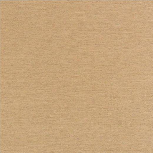 American Olean St Germain 12 X 24 Or Tile & Stone