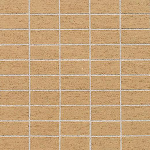 American Olean Sg Germain Inlaid Or Tile & Stone
