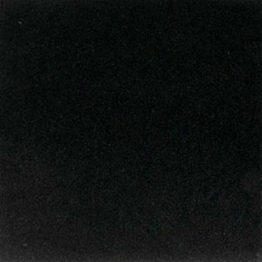 American Olean Stone Source 12 X 12 Absolute Black Tile & Stone