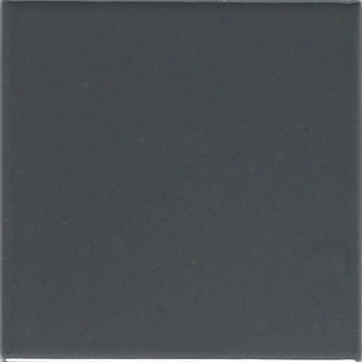 American Olean Urban Cangas Gloss 4 X 12 Smookey Silex Tile & Stone