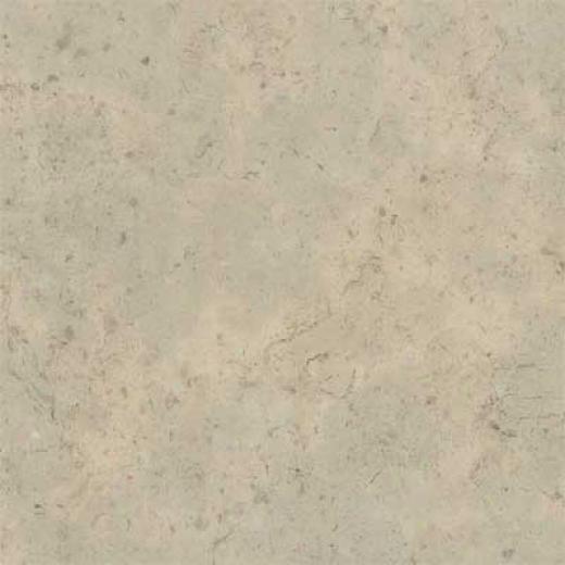 Amtico Fowsil Limestone 12 X 12 Fossil Limestone Vinyl Floiong