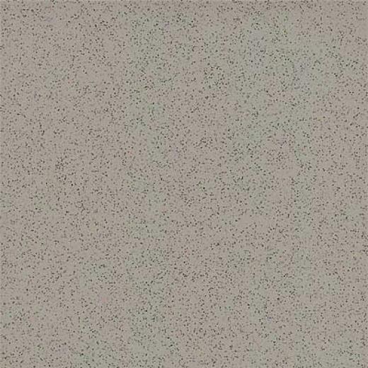 Amtico Microspec 12 X 12 Microspec Mud Vinyl Flooring