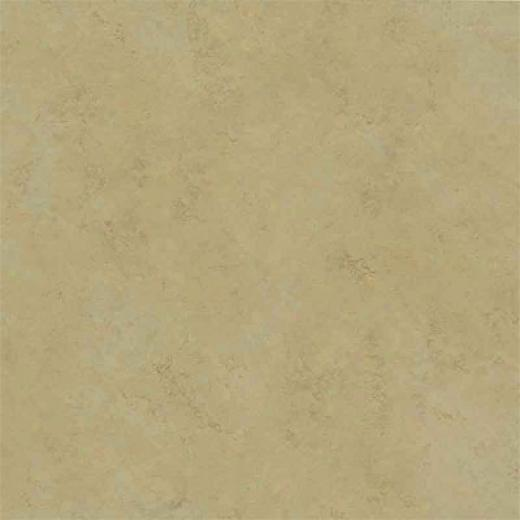 Amtico Spacia Stone Concrere Putty Vinyl Flooring