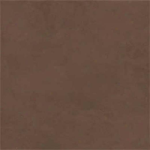 Amtico Standard Stained Concrete 18 X 18 Stained Concrete Chocolate Vinyl Flooring