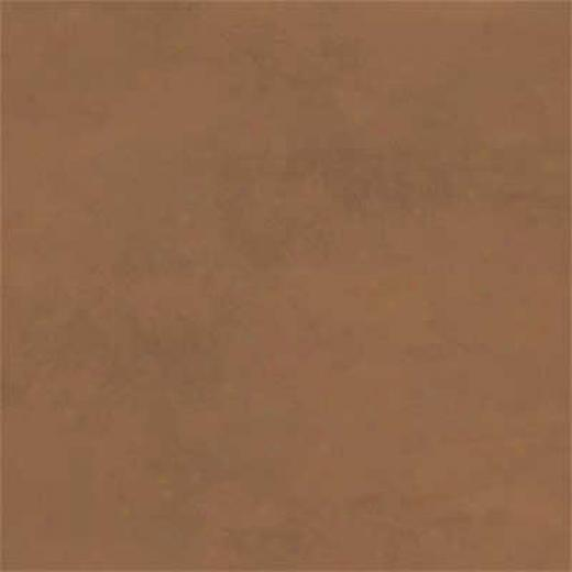 Amtico Standard Stained Concrete 12 X 18 Stained Concrete Tan Vinyl Flooring