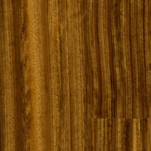 Anderson Maritime Natural Beli Hardwood Flooring