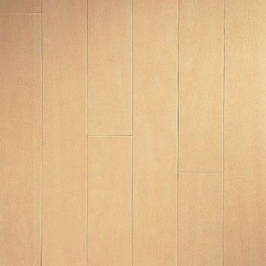 Armstrong Arbor Art 4 X 36 White Maple Light Vinyl Flooring