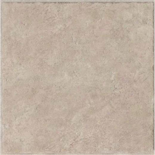 Armstroong Classic Collection Grouted Ceramic Ii Pumice Vinyl Flooring