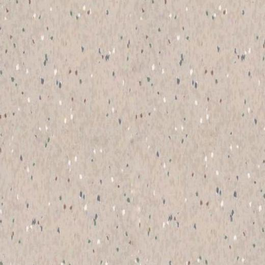 Armstrong Companion Square Premium Excelon Party White Vinyl Flooring