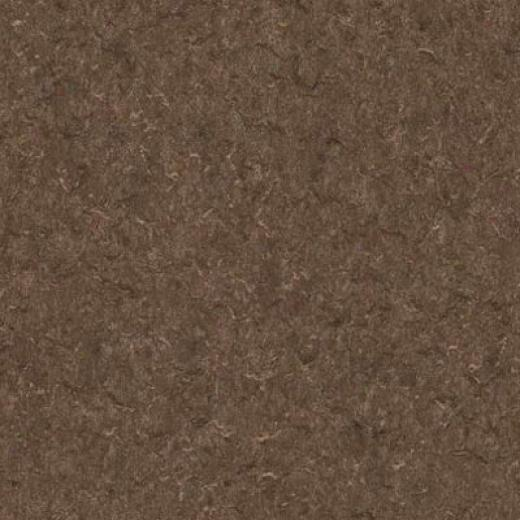 Armstrong Cushionstep Best - Universal Cocoa Vinyl Flooring