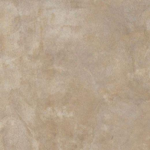 Armstrong Earthcuts 17 X 18 Color Wash Warm Gray Vinyl Flooring
