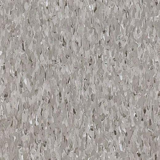 Armstrong Excelon Imperial Texture Field Gray Vinyl Floorinb