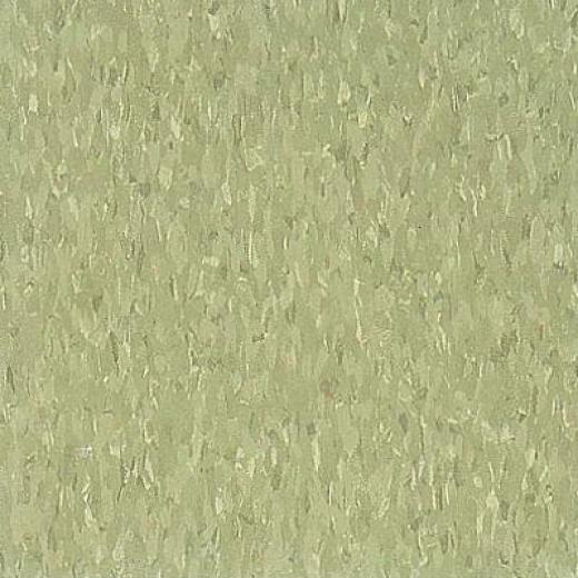 Armsttrong Excelon Imperial Texture Little Green Apple Vinyl Flooring