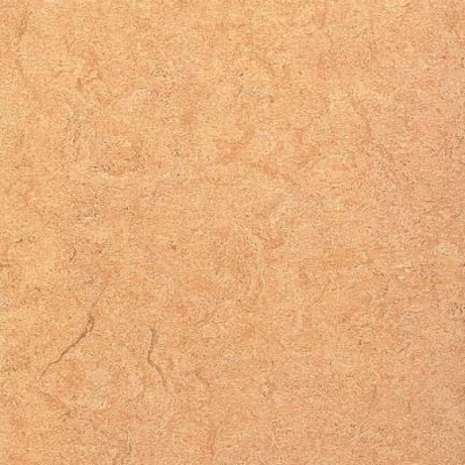 Armstrong Marmorette With Naturcote Fools Gold Vinyl Flooring