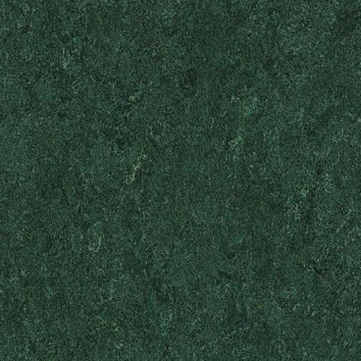 Armstrong Marmorette With Naturcote Holly Green Vinyl Floorinb