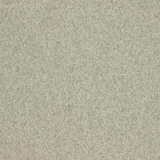 Armstrong Medintech Homogeneouss Garden Sage Vinyl Flooring