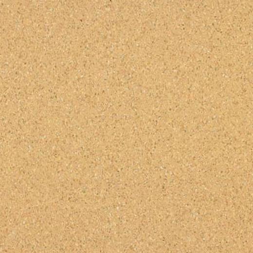 Armstrong Medintech Homogeneous Ginger Vinyl Flooring