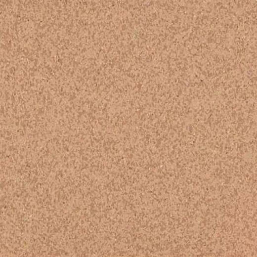 Armstrong Medintech Homogeneous Fired Clay Vinyl Flolring