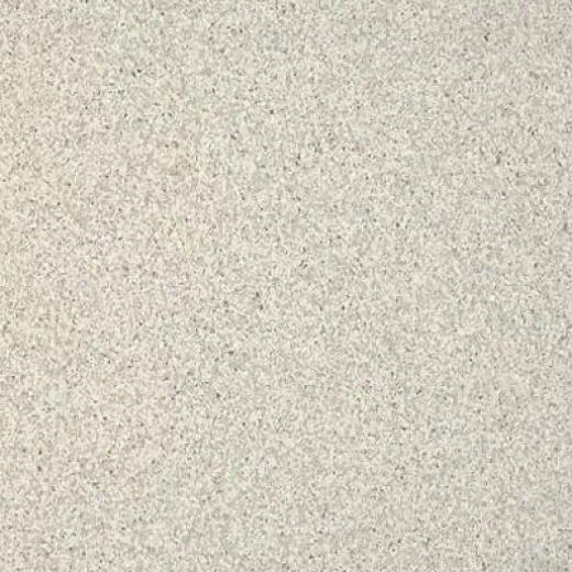Armstrong Medintech Homogeneous Silver Gray Vinyl Flooring