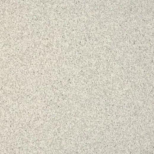 Armstrong Medintech Tandem Inlaid Silver Gray Vinyl Flooring