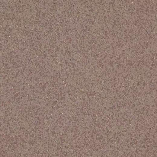 Armstrong Medintech Tandem Inlaid Smoketree Brown Vinyl Flooring