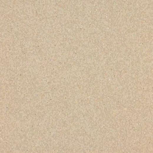 Armstrong Medintech Tandem Inlaid Desert Gold Vinyl Flooring