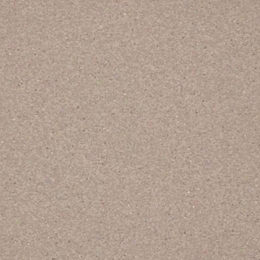 Armstrong Medintehc Tandem Inlaid Pimice Stone Vinyl Flooring