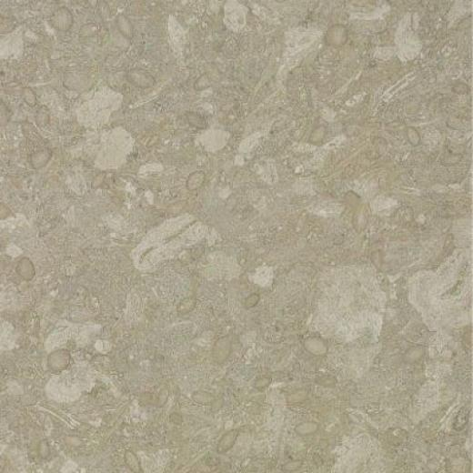 Armstrong Mode - Stone 12 X 12 Mancos Slate Chalk Vinyl Flooring
