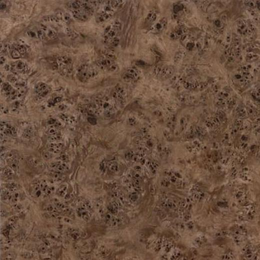 Armstrong Mystix 12 X 12 Burl Forest Walnut Vinyl Flooring