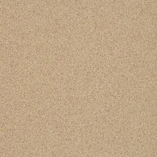 Armstrong Possibilities Petit Point Montelimar Beige Vinyl Flooring