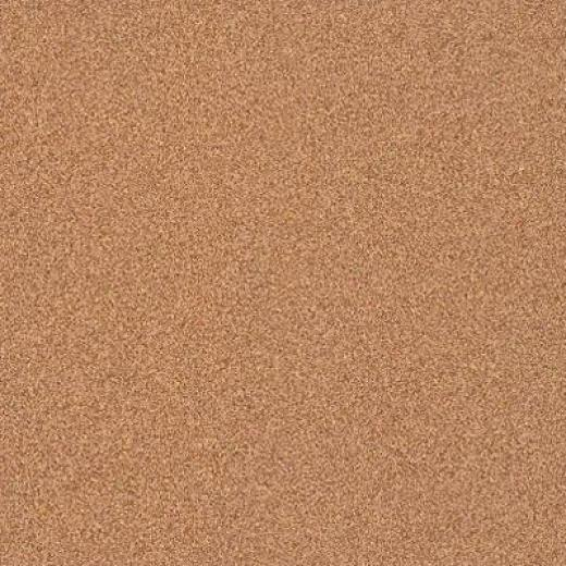 Armstrong Possibilities Petit Point Terra Firma Vinyl Flooring