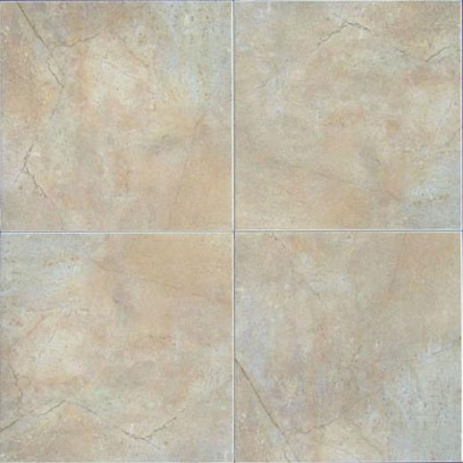 Bab Tile Earthtone 18 X18 Deert Tile & Stone