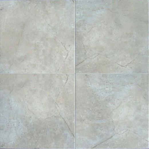 Bab Tile Earthtone 18 X18 Forest Tile & Stone