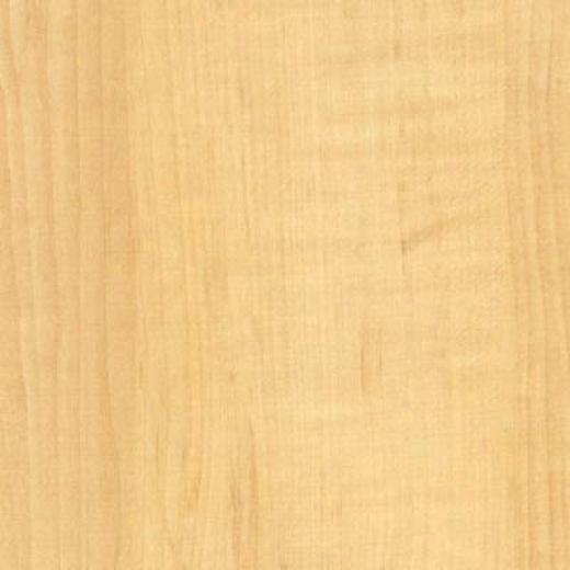 Bhk Moderna - Lifestyle American Birch Laminate Flooring