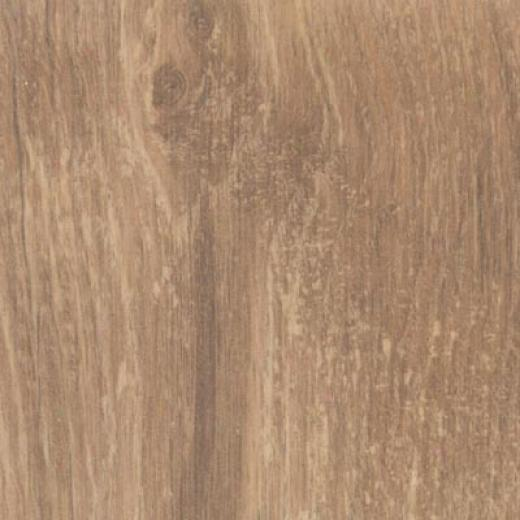 Bhk Moderna - Lifestyle Cabin Oak Laminate Flooring