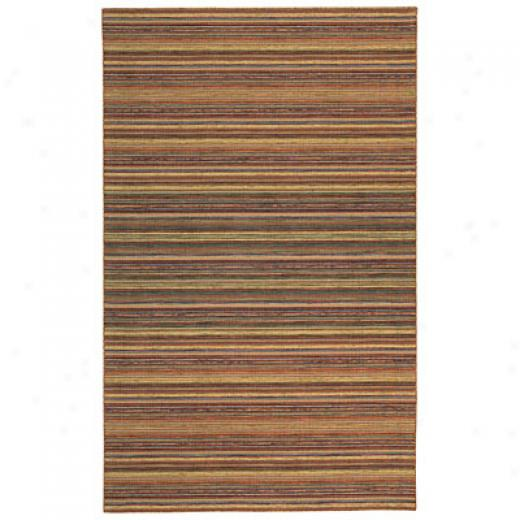 Capel Rugs Del Cabo 8 X 11 Rainbkw Superficial contents Rugs