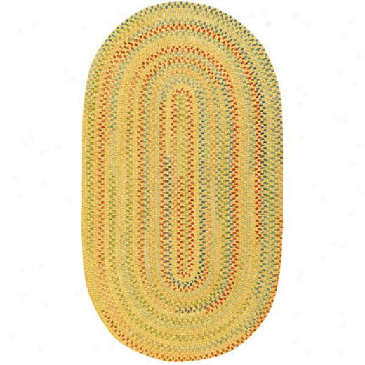Capel Rugs Medley 4x6 Oval Sunny Area Rugs