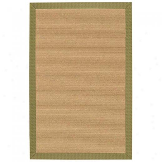 Capel Rugs South Terrace 8 X 11 Fern Area Rugs