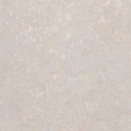 Ceramicas Gaya Coliseum 8 X 10 Almond Tile & Stone