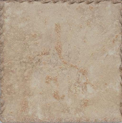 Cerdomus Pietra D Assisi 8 X 8 Noce Tile & Stone