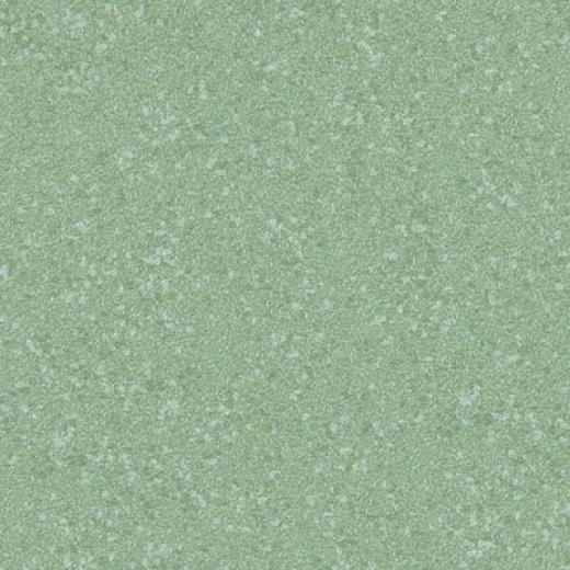 Ceres Wels Vs Series 451 Vinyl Flooring