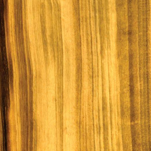 Cikel Brasilia Solids 3 1/4 Inch Tigerwood Hardwood Floorlng