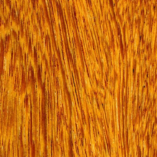 Cikel Leblon Engineered 3 1/4 Inch Ironwood Natural Hardwood Flooring