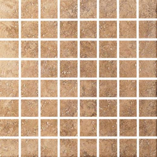 Cinca Forum Mosaic 64 Nut Tile & Stone
