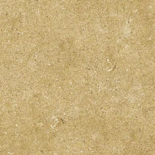 Cinca Limestone 10 X 20 Rectified Gold Tile & Stone