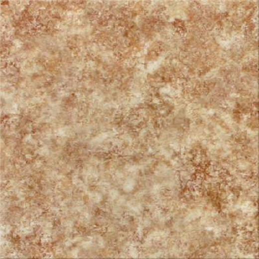 Congoleum Xclusive - Rain Dance Dusty Brown Vinyl Flooring
