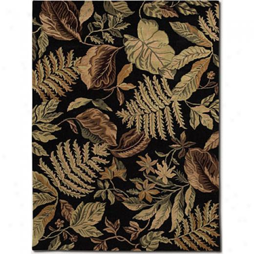 Courista nBali 4 X 5 Tasmania Brown Area Rugs