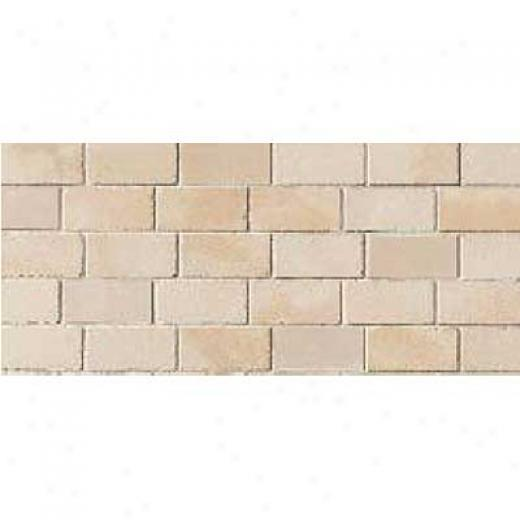 Crossville Buenos Aires Mood Mosaic 12 X 24 Combined Polo Tile & Stone