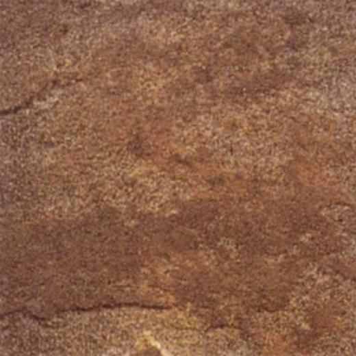 Daltile Ardesia 18 X 18 Marrone Tile & Stone