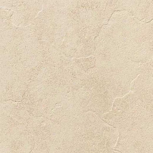 Daltile Cliff Pointe 12 X 12 Beach Tile & Stone